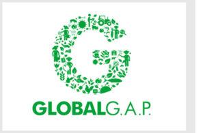 global_gap