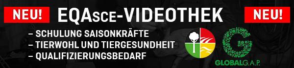 BANNER_VIDEOTHEK_600x140