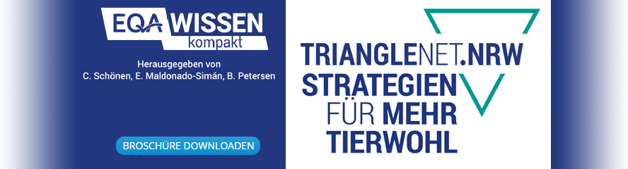 teaser_strategien